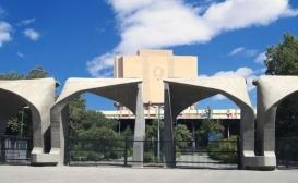 ناموفق بودن دانشگاه تهران به عنوان یک دانشگاه متجدد در تولید علم